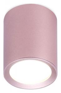 Накладной светильник Ambrella Techno 27 TN217