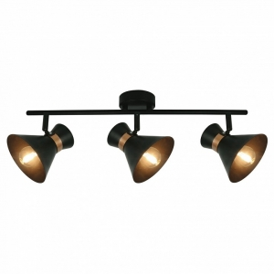 Спот Arte Lamp Baltimore A1406PL-3BK