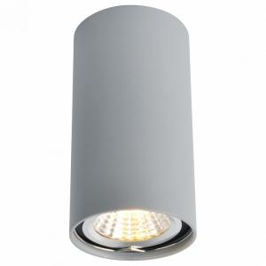 Накладной светильник Arte Lamp 1516 A1516PL-1GY