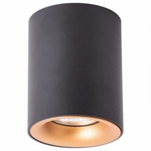 Накладной светильник Arte Lamp Torre A1532PL-1BK