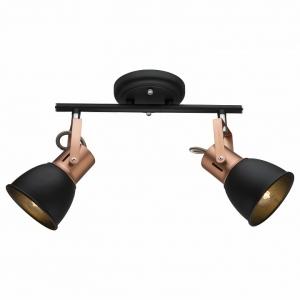 Спот Arte Lamp 1677 A1677PL-2BK