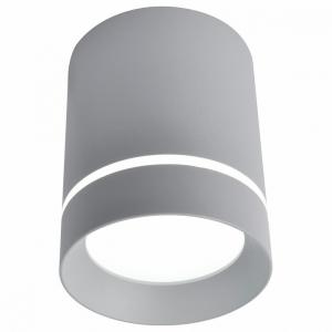 Накладной светильник Arte Lamp 1909 A1909PL-1GY