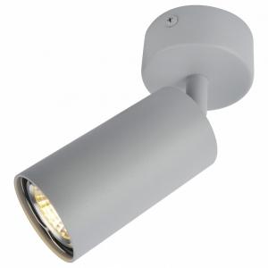 Спот Arte Lamp 3216 A3216PL-1GY