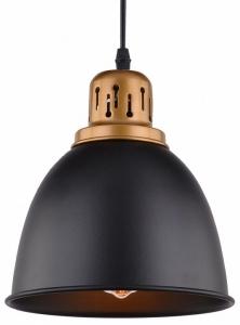 Подвесной светильник Arte Lamp Eurica A4245SP-1BK