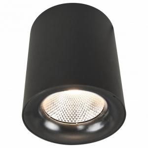 Накладной светильник Arte Lamp 5118 A5118PL-1BK
