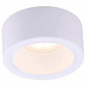 Накладной светильник Arte Lamp Effetto A5553PL-1WH