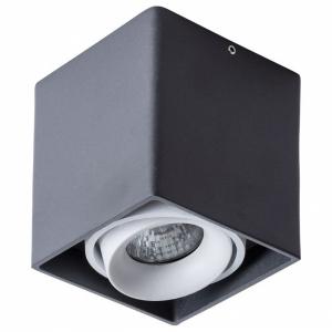 Накладной светильник Arte Lamp Pictor A5654PL-1BK