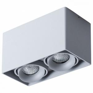 Накладной светильник Arte Lamp Pictor A5654PL-2GY