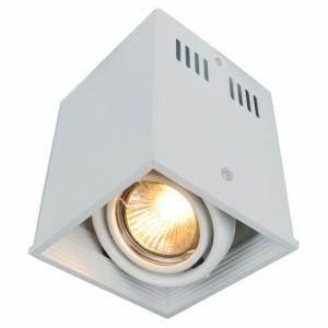 Накладной светильник Arte Lamp Cardani A5942PL-1WH