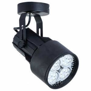 Светильник на штанге Arte Lamp 6252 A6252AP-1BK