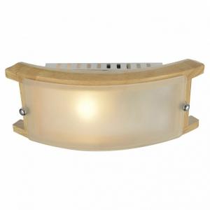 Накладной светильник Arte Lamp Archimede A6460AP-1BR