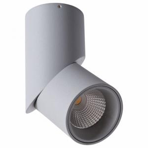 Накладной светильник Arte Lamp Orione A7717PL-1GY
