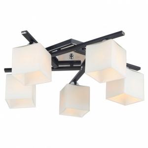 Потолочная люстра Arte Lamp Visuale A8165PL-5BK