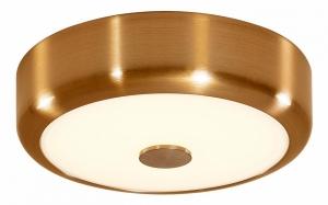 Накладной светильник Citilux Фостер-1 CL706112