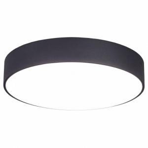 Накладной светильник Citilux Тао CL712242N