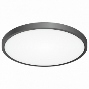 Накладной светильник Citilux Бейсик CL738321V