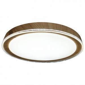 Накладной светильник Escada 10269 10269/S LED