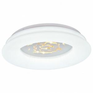 Накладной светильник Escada 10284 10284/S LED