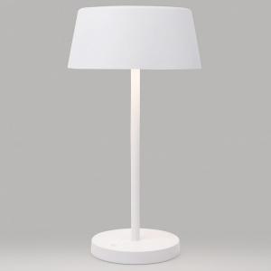 Настольная лампа декоративная Eurosvet Apollo 80424/1 белый
