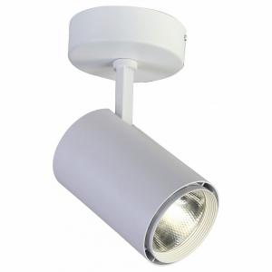 Светильник на штанге Favourite Projector 1773-1U