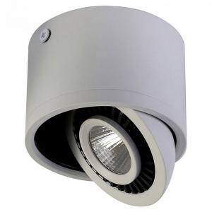 Накладной светильник Favourite Reflector 1775-1C