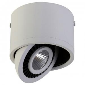 Накладной светильник Favourite Reflector 1776-1C