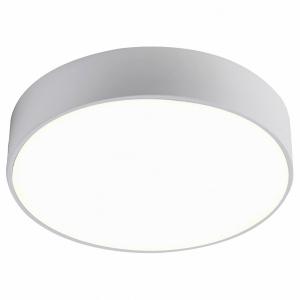 Накладной светильник Favourite Flashled 2065-24C