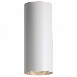 Накладной светильник Favourite Drum 2247-1U
