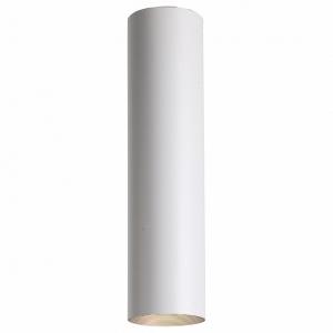 Накладной светильник Favourite Drum 2248-1U