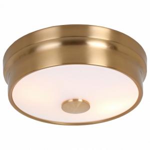 Накладной светильник Favourite Pannikin 2375-2C