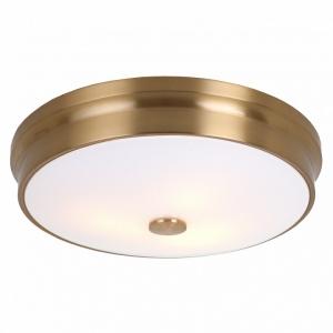 Накладной светильник Favourite Pannikin 2375-3C