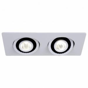 Встраиваемый светильник Favourite Cardine 2417-2U