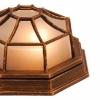 Накладной светильник Globo Perseus 31213