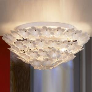 Накладной светильник Lussole Asinara GRLSA-5107-09