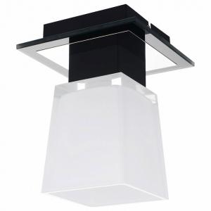 Накладной светильник Lussole Lente GRLSC-2507-01