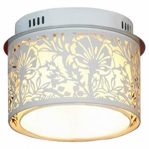 Накладной светильник Lussole Vetere GRLSF-2307-04