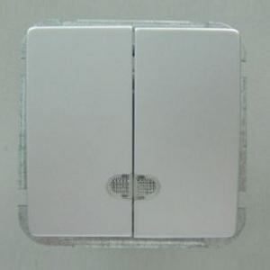 Выключатель двухклавишный без рамки Imex 1188L 1188L-S320
