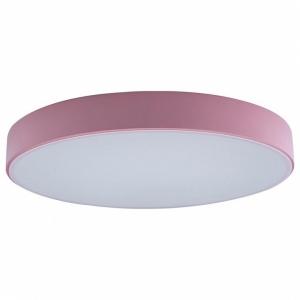 Накладной светильник Loft it Axel 1 10002/24 Pink