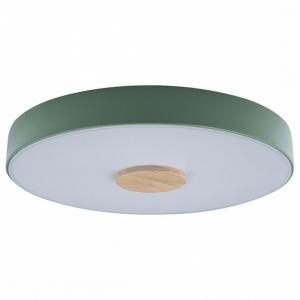 Накладной светильник Loft it Axel 2 10003/24 Green
