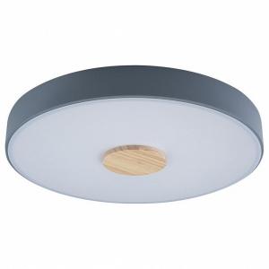 Накладной светильник Loft it Axel 2 10003/24 Grey