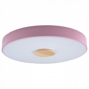 Накладной светильник Loft it Axel 2 10003/24 Pink