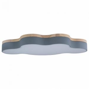 Накладной светильник Loft it Axel 4 10005/36 Grey
