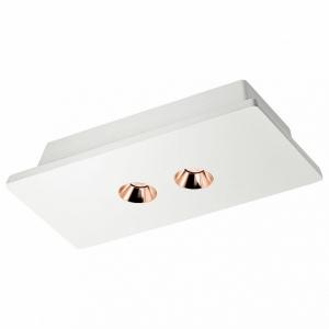 Накладной светильник Loft it Architect OL1072-WG/2