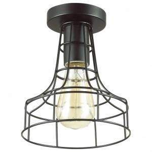 Накладной светильник Lumion Alfred 3639/1C