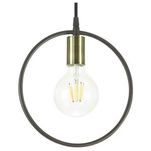 Подвесной светильник Lumion Darryl 3691/1
