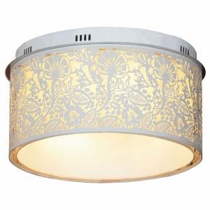 Накладной светильник Lussole Vetere LSF-2307-07