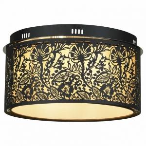 Накладной светильник Lussole Vetere LSF-2377-07