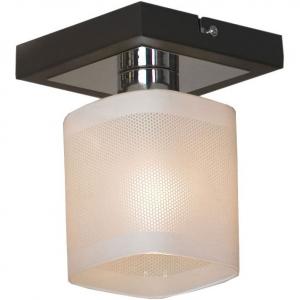 Светильник на штанге Lussole Costanzo LSL-9007-01
