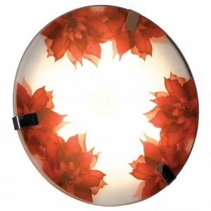 Накладной светильник Lussole Cascano LSN-5252-01
