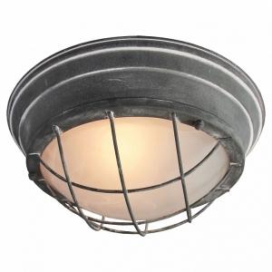 Накладной светильник Lussole Brentwood LSP-9881